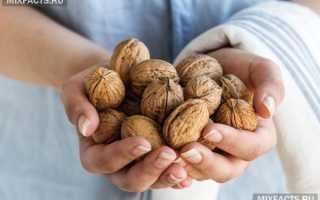 Польза грецких орехов при похудении