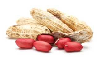 Полезен ли жареный арахис при похудении