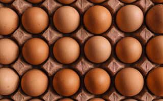 Виды белка при похудении